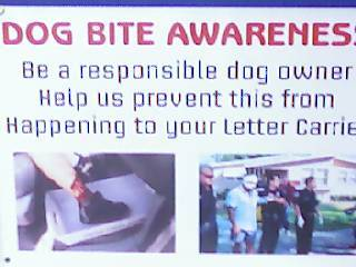 dog awareness